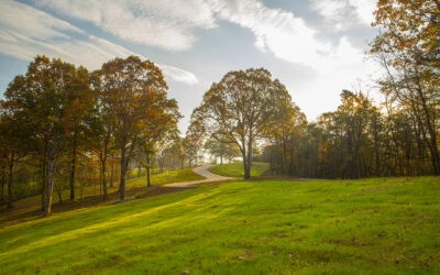 How to Buy Land to Build Your Own Home